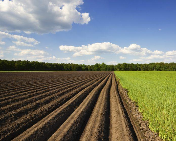 Сколько стоит оформление земельных паев