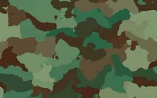 Резюме образец военнослужащего бланк