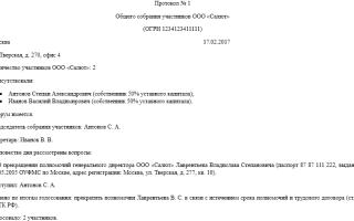 Протокол увольнение директора ооо образец