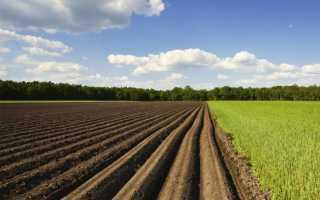 Сколько стоит переоформить земельный пай по наследству