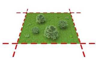 Как вступить в права наследства земельного участка