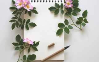 Как правильно писать письмо образец другу