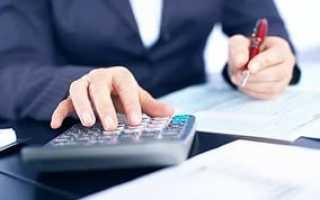 Резюме главного бухгалтера бюджетного учреждения образец