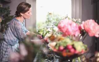 Резюме цветочного магазина образец