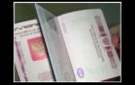 Образец бланка заявления загранпаспорт нового поколения