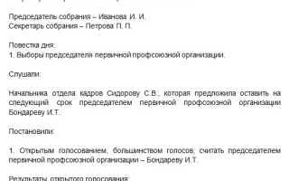 Протокол собрания профсоюза образец