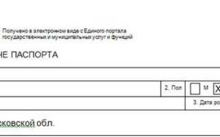 Пример заполнения заявления на загранпаспорт старого образца