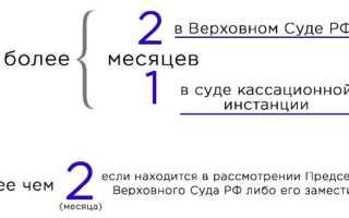 Образец жалобы на апелляционное определение областного суда