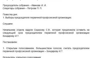 Выписка из протокола профкома образец