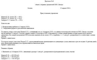 Протокол распределения дивидендов образец