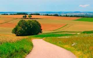 Закон украины о передаче фермерских хозяйств в наследство
