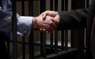 Ходатайства в уголовном процессе образец