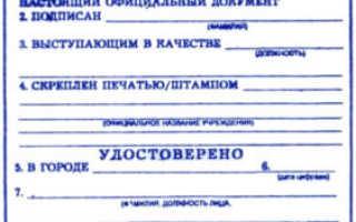 Образец доверенности на представление интересов украина