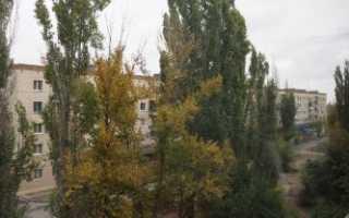 Договор посуточной аренды квартиры образец