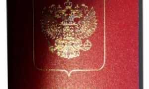 Образец заявления на загранпаспорт ип