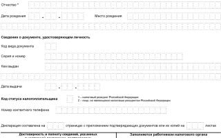 Образец формы налоговой декларации